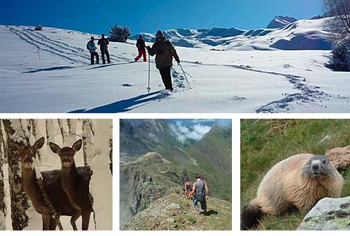 Pachamama Pyrénées - Randos Louron - Aure -Peyragudes